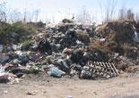 ambiente-ecco-come-smaltire-i-rifiuti-di-natale.jpg