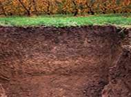 ddl-consumo-di-suolo-nuove-richieste-dalla-commissione-bilancio.jpg