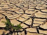 dissesto-idrogeologico-al-via-il-piano-del-governo-si-parte-dalle-grandi-citt.jpg