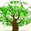 Ecoreati, nuova legge da testare al fine di verificarne l'impatto