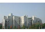 edilizia-quotazioni-immobiliari-del-1-semestre-2009.jpg