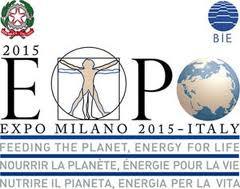 expo-2015-una-legge-speciale-e-un-commissario-unico.jpg