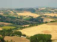 imu-terreni-agricoli-ex-montani-lanci-spinge-per-labolizione.jpg