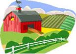 pagamento-imu-2013-cosa-succede-a-terreni-agricoli-e-fabbricati-rurali.jpg