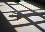sicurezza-sul-lavoro-quasi-200-morti-bianche-nei-primi-4-mesi-del-2014.jpg